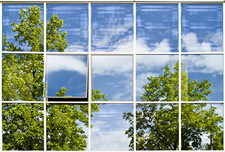 Office windows with reflection of trees